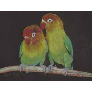Coloursoft & Metallic: Lovebirds