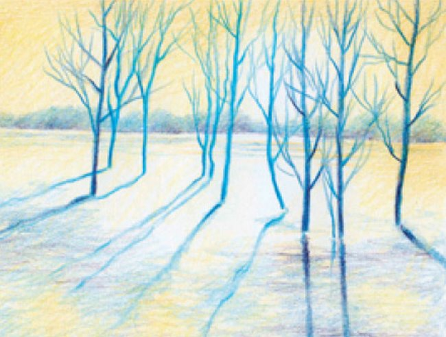 Artists pencils: Winter trees project