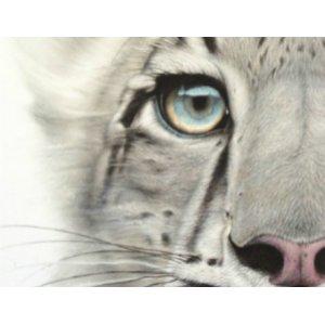 Snow Leopard van Martin Aveling