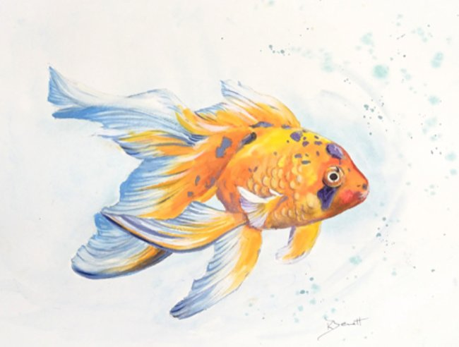 Derwent_Inktense and Metallic Goldfish Step by Step