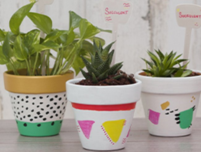 Derwent Painting a Plant Pot Step by Step Guide