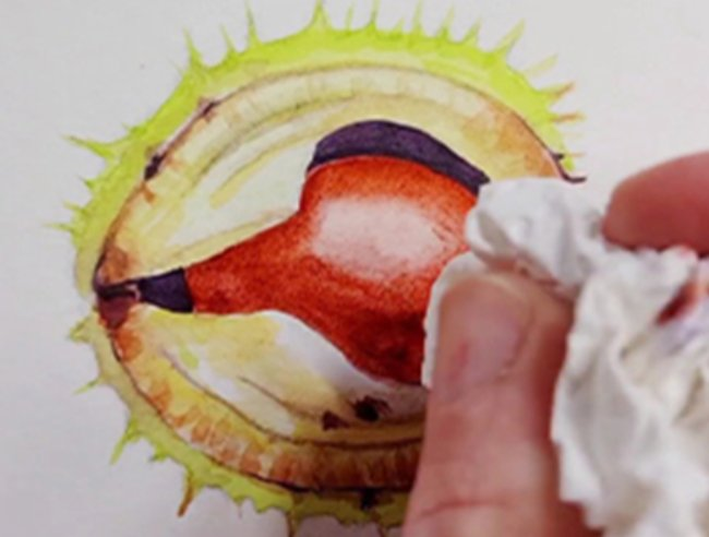 Derwent_Inktense Horse Chestnut by Julia Woning Step by Step