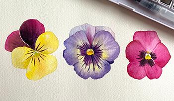 Inktense Spring Pansies
