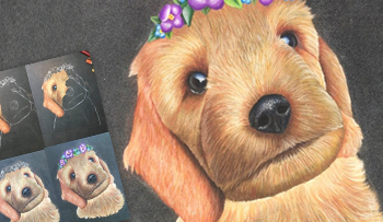 Pastel Pencil Pet Portrait